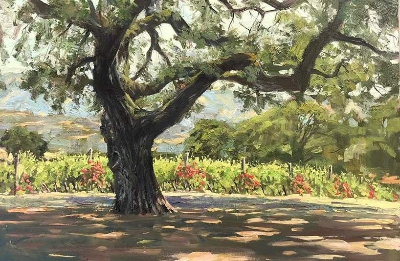 Landscape of oak tree with vineyard and hills in background