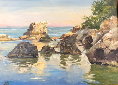 Landscape of Adriatic coast line with rocks