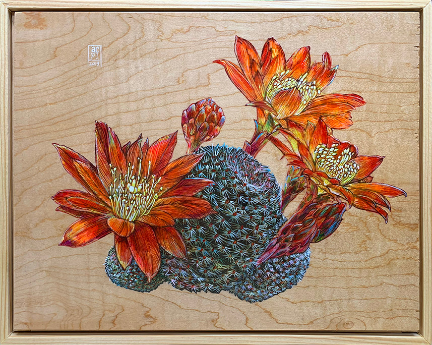 Illustrative painting of blooming cacti on wood
