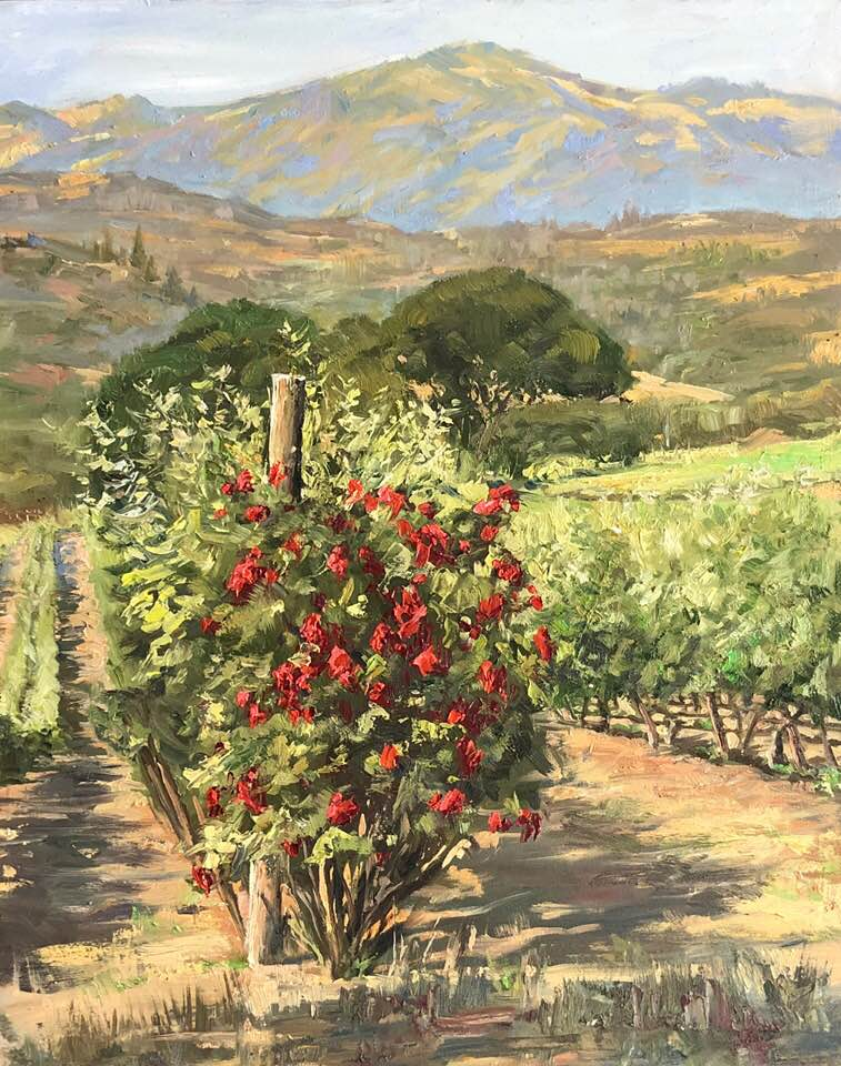 Landscape of roses planted at the end of vineyard row